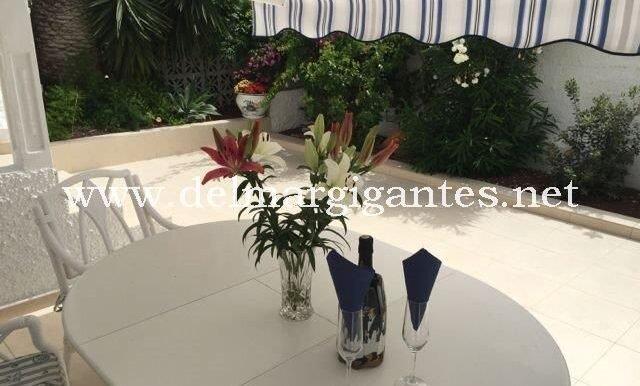Calle Pino 3 - Patio and garden