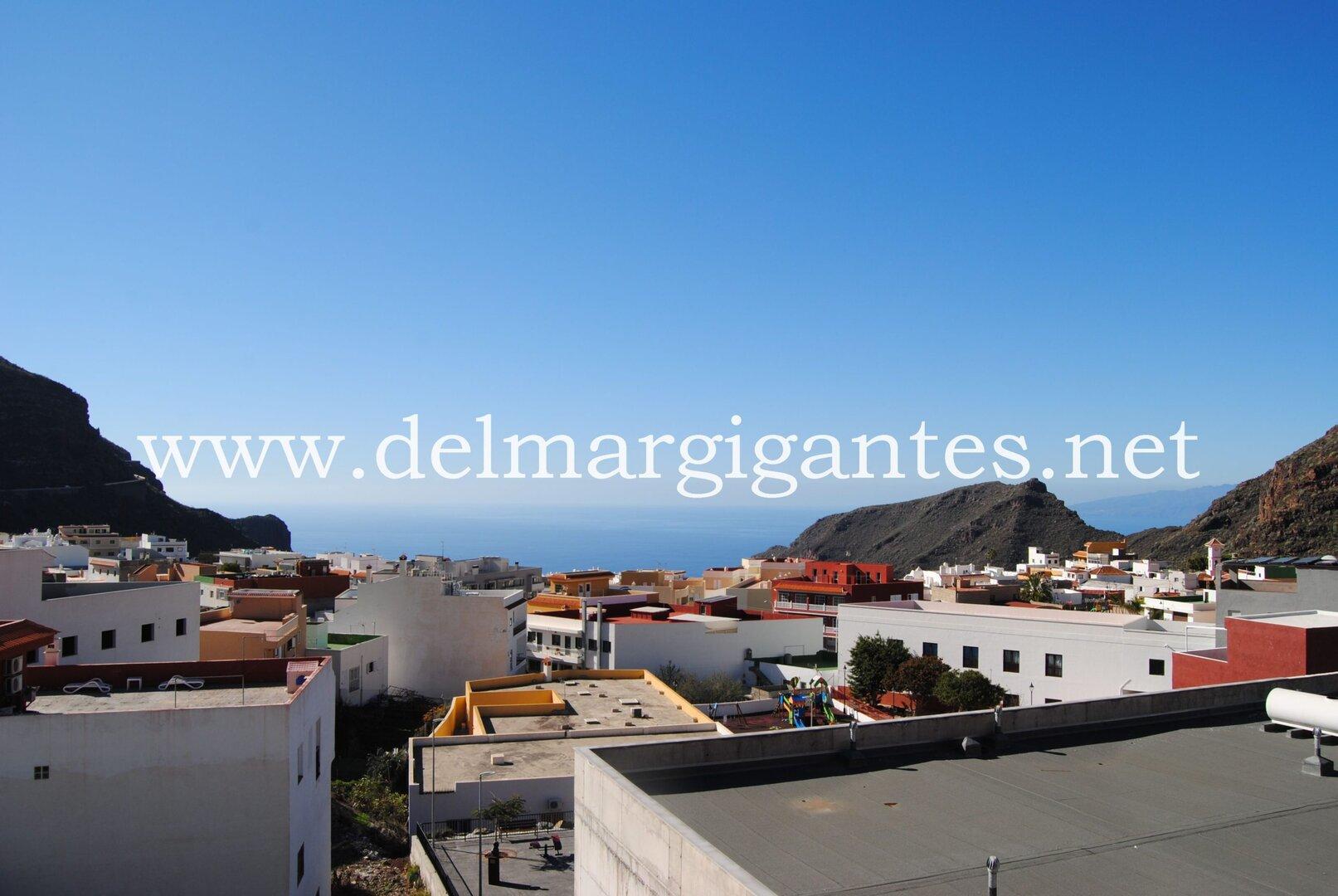 (English) Begonia